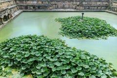 Bhandarkhal vattenbehållare, när den huvudsakliga tillförselen av vatten för slotten och Taleju tempel, Patan Durbar fyrkant, Nep fotografering för bildbyråer