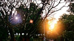 Bhawan κήπος Raj Στοκ Φωτογραφία