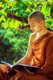 Bhikkhu, Book, Boy Royalty Free Stock Photos