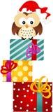 Búho en los regalos de la Navidad Fotografía de archivo libre de regalías