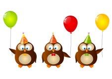 Búhos del cumpleaños Imagen de archivo libre de regalías