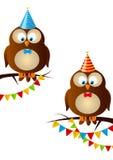 Búhos del cumpleaños Foto de archivo libre de regalías