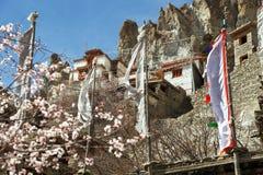Bhraka ή gompa και χωριό της Braga Στοκ Φωτογραφίες