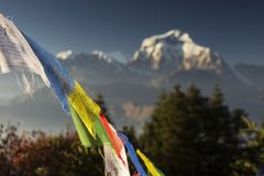 Bhuddism flags with Dhaulagiri peak in background at sunset in Himalaya Mountain, Nepal.  royalty free stock photo