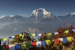 Bhuddism flags with Dhaulagiri peak in background at sunset in Himalaya Mountain, Nepal. Bhuddism flags with Dhaulagiri peak in background at sunset in Himalaya stock photo