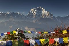 Bhuddism flags with Dhaulagiri peak in background at sunset in Himalaya Mountain, Nepal. Bhuddism flags with Dhaulagiri peak in background at sunset in Himalaya stock image