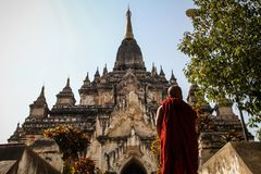 Bhuddist Monk going to gather his thoughts at the Thatbyinnyu Temple, Bagan, Mandalay Region, Myanmar. Thatbyinnyu Temple, Sabbannu or `the Omniscient`, is a stock photo