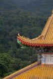 Bhuddist tempel i jumgle Royaltyfria Bilder
