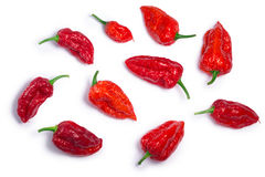 Bhut Jolika ghost peppers, paths, top view. Bhut Jolokia ghost chili peppers Capsicum frutescens x Capsicum chinense hybrid. Clipping paths, shadows separated Stock Images