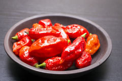 Bhut Jolokia fruit Royalty Free Stock Images