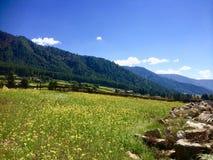 Bhutan Landscapes - Paro. Beautiful green Meadows amidst the mountains of Paro, Bhutan Stock Image