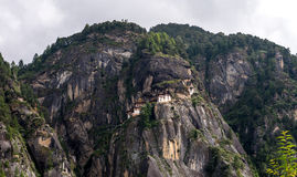 Bhutan Rice Fields, Paro Valley Sep 2015 Royalty Free Stock Photography