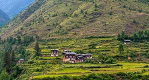 Bhutan Rice Fields, Paro Valley Sep 2015 Royalty Free Stock Images