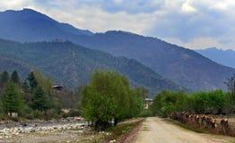 Bhutan Travel Stock Photography