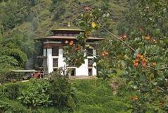 Bhutan, Wangdi Phodrang, Stock Foto's