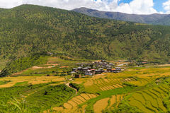 Bhutanese χωριό και terraced τομέας σε Punakha, Μπουτάν Στοκ εικόνες με δικαίωμα ελεύθερης χρήσης