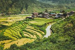 Bhutanese χωριό και terraced τομέας σε Punakha, Μπουτάν Στοκ Εικόνα