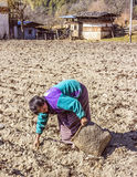 Bhutanese farmer on the field Royalty Free Stock Image
