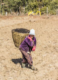 Bhutanese farmer on the field Royalty Free Stock Photos