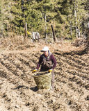 Bhutanese farmers on the field Royalty Free Stock Images