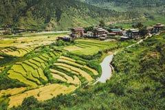 Bhutanese wioska i tarasujący pole przy Punakha, Bhutan Obraz Stock