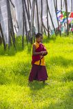 Young novice monk walks in meadow , Bhutan. A Bhutanese young novice boy monk walks in meadow which surround by prayer flags . Bhutan royalty free stock image