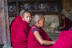 A Bhutanese young novice monk turn his head to gaze the sky during study , Bhutan. This group of young Buddhist novice monks reading and chanting . boys would royalty free stock photography
