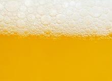 Bière Photographie stock libre de droits
