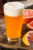 Bière aigre de métier de pamplemousse image libre de droits