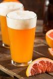 Bière aigre de métier de pamplemousse images libres de droits
