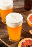 Bière aigre de métier de pamplemousse photos libres de droits