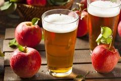 Bière anglaise dure de cidre d'Apple images stock