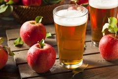 Bière anglaise dure de cidre d'Apple image stock