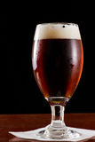 Bière anglaise rouge irlandaise Photo libre de droits