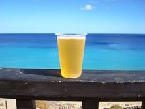 Bière au soleil Photographie stock libre de droits