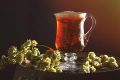 Bière avec des houblon Photo stock