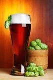 Bière avec l'houblon mûr frais Image stock