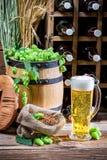 Bière blonde faite maison Image libre de droits