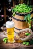 Bière blonde faite maison images libres de droits