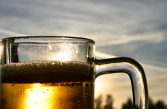 Bière contre le ciel Images stock