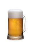 Bière dans la glace Photo libre de droits