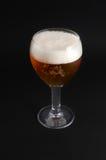 Bière dans le verre sur le fond noir Photographie stock libre de droits