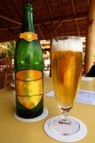 Bière dans un endroit tropical Photos stock