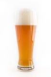 Bière de blé Images libres de droits