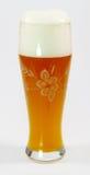 Bière de blé photo libre de droits