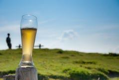 Bière de blé sur le poteau en bois Photographie stock libre de droits