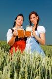 Bière de Dirndl oktoberfest image libre de droits