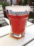Bière de la Belgique d'ébauche de Hoegaarden dans de grande taille Photo stock