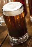 Bière de racine régénératrice froide Photographie stock libre de droits