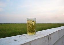 Bière en verre Photographie stock libre de droits